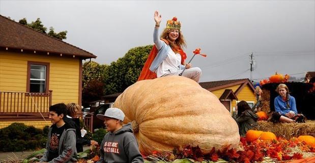 ABD'de 866 kilogramlık bal kabağı sergilendi