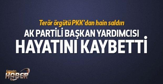 AK Partili Başkan Yardımcısına hain saldırı
