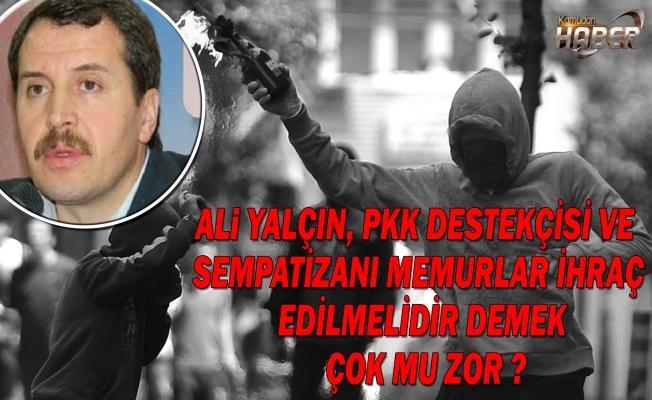 ALi YALÇIN, PKK DESTEKÇİSİ VE SEMPATİZANI MEMURLAR İHRAÇ EDİLMELİDİR DEMEK ÇOK MU ZOR ?