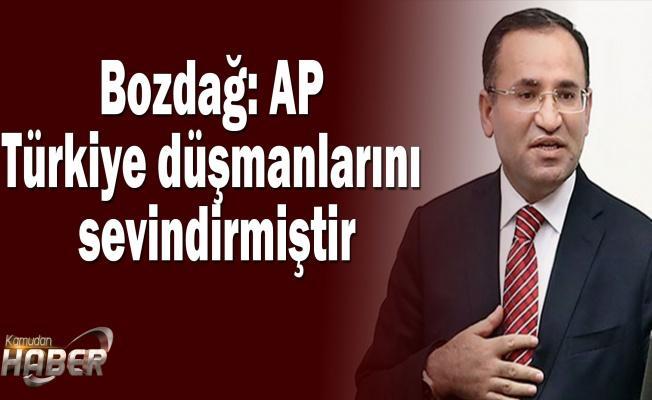 Bozdağ: AP Türkiye düşmanlarını sevindirmiştir