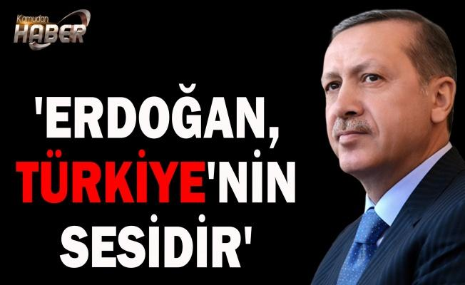 'Erdoğan, Türkiye'nin sesidir'