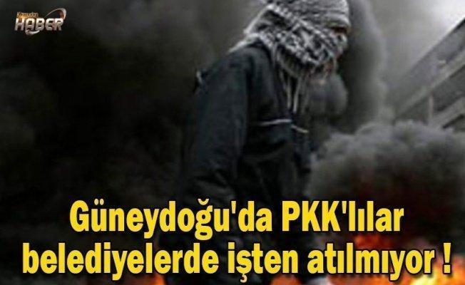 Güneydoğu'da PKK'lılar belediyelerde işten atılmıyor !