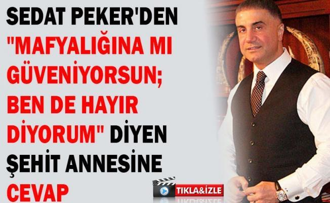 """Sedat Peker'den """"Mafyalığına mı güveniyorsun; ben de hayır diyorum"""" diyen şehit annesine cevap"""
