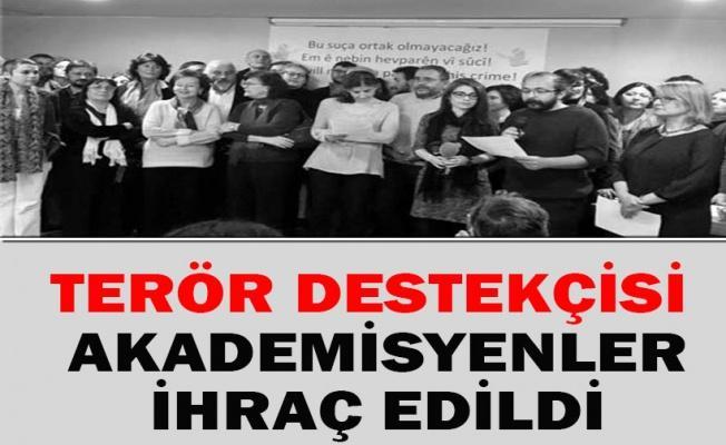 Terör destekçisi akademisyenler ihraç edildi!