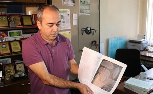 Türk profesör, Teksas'ta yeni ostrakod türleri keşfetti