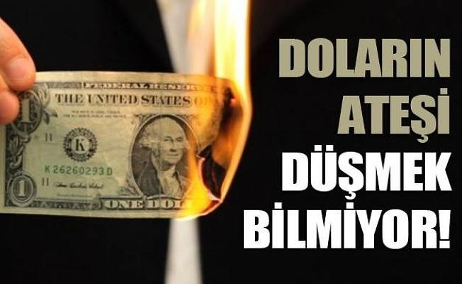 Dolar'ın ateşi düşmüyor: İşte son rakamlar...