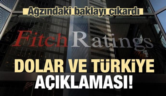 Fitch'ten dolar ve Türkiye açıklaması