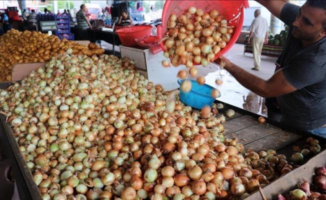 Patates ve soğan fiyatlarında keskin düşüş