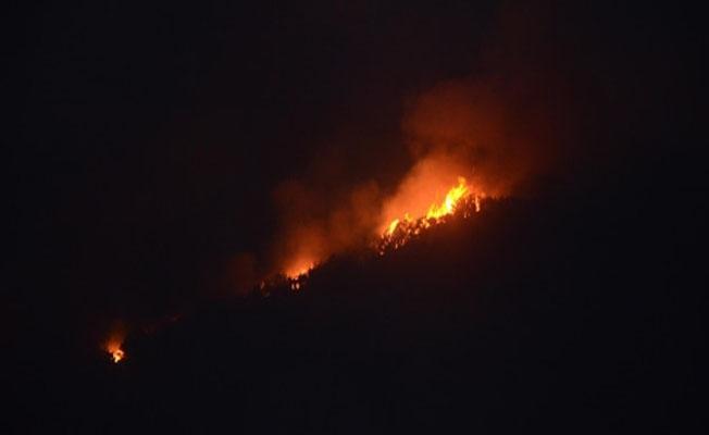 Korkutan gelişme: Orman yangını hızla yayılıyor