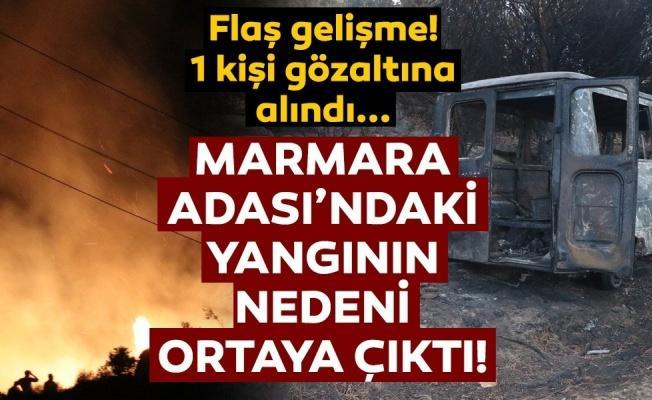 Marmara Adası'ndaki yangında bir kişi gözaltına alındı