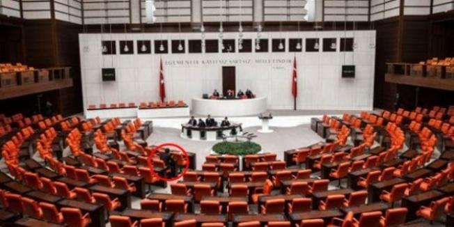 Meclis'te tek başına! Sosyal medya bu kareyi konuşuyor