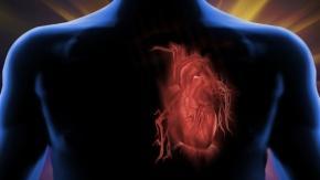 Kalp krizi sırasında ne olur?